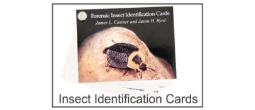Forensic Insect Identification Cards